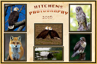 Hitchens Photography Cover Page